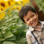 Sunflower Fields Waialua, Hawaii: Tysen | Hawaii Children Photographer