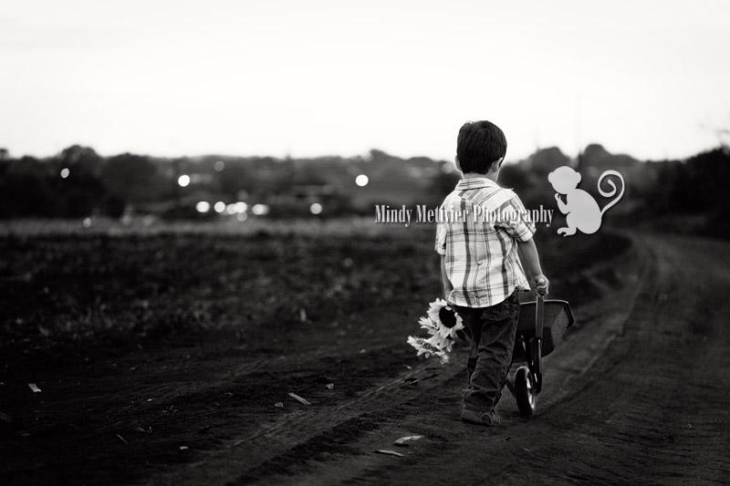 Hawaii Children Photo