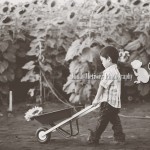 Wordless Wednesday | Hawaii Child Photographer