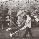 Wordless Wednesday | Hawaii Child Photographer