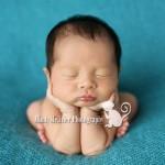 Newborns: Ryden | Hawaii Newborn Photographer