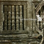 Wordless Wednesday | Beng Mealea, Cambodia Travel Photographer