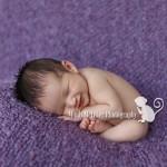 Sneak Peek: Grace   Hawaii Newborn Photographer