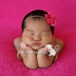Newborns: Rylie | Hawaii Newborn Photographer