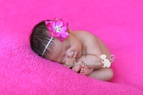 Hawaii Newborn Photo Mindy Metivier