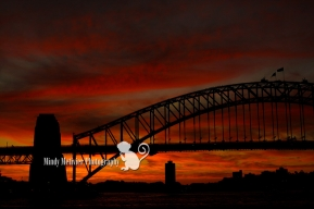 Syndey Harbor Bridge Australia Mindy Metivier Photo
