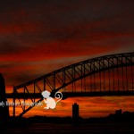Wordless Wednesday | Sydney, Australia Travel Photographer