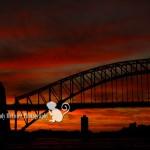 Wordless Wednesday | Sydney, Australia Travel Photographer