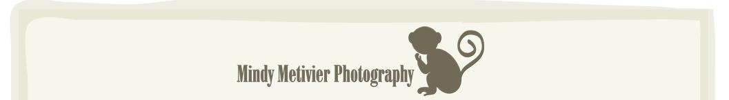 Hawaii Newborn Photographer | Mindy Metivier Photography logo